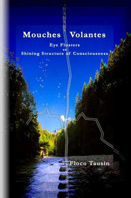 Das Book/eBook: Mouches Volantes - Eye Floaters as Shining Structure of Consciousness.